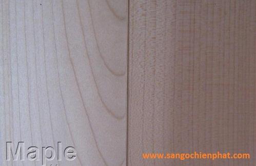 Sàn gỗ Maple
